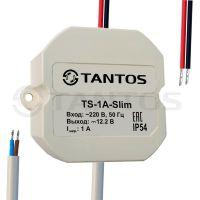 Источник вторичного электропитания TS-1A-Slim