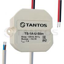 Источник вторичного электропитания TS-1A-U-Slim